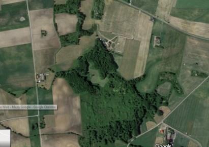 działka na sprzedaż - Wielgie, Nowa Wieś